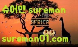 아프리카 먹튀